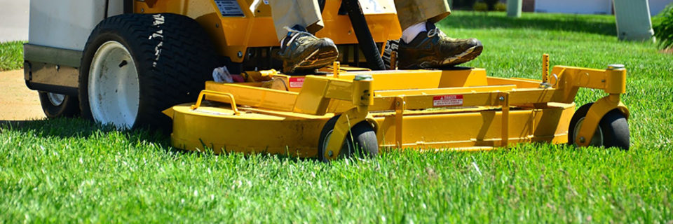 Lawn Mowing and Garden Services Call us for: Lawn Moving, Gardening, Hedges, Pruning, Weed Control, Fertilizing